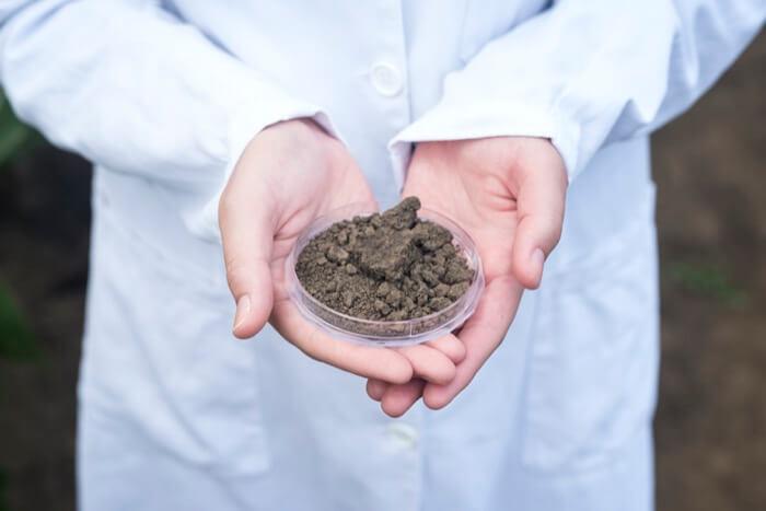 étude du ph du sol