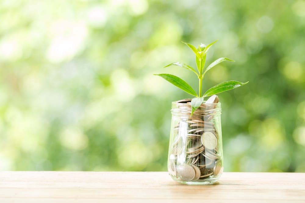 Plan de relance : quels soutiens financiers pour le secteur de l'eau ?